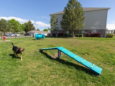 Apartments in Taylorsville for Rent - Maison's Landing Gated, On-Site Dog Park with Obstacle Games