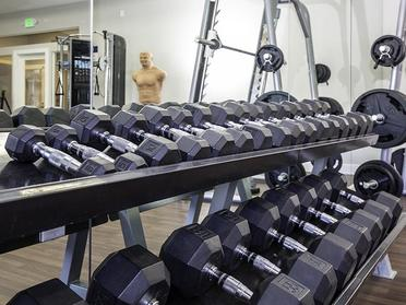 Free Weights | Alpine Meadows Apartments