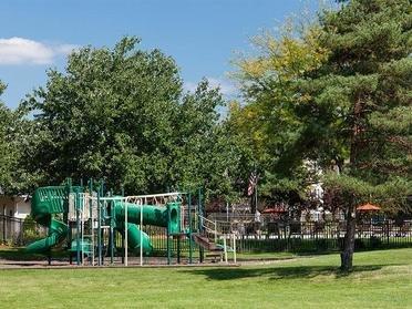 Playground | Ardsley Ridge