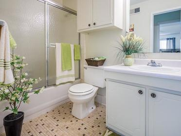 Bathroom | Briarwood Apartments