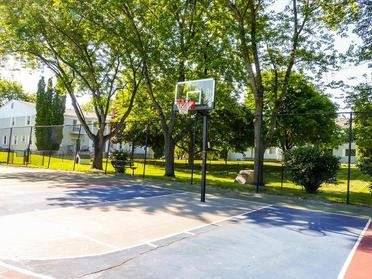Basketball Court | Township Court