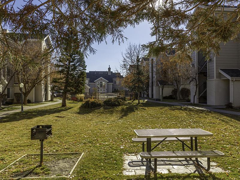 BBQ & Picnic Area | Country Springs