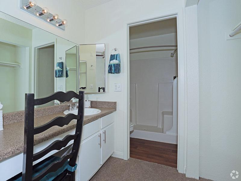 Master Bathroom  | Desert Ridge Apartments