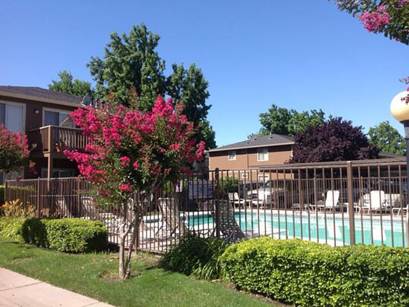 Apartments WIth a Nice Pool | Riverbank Apartments