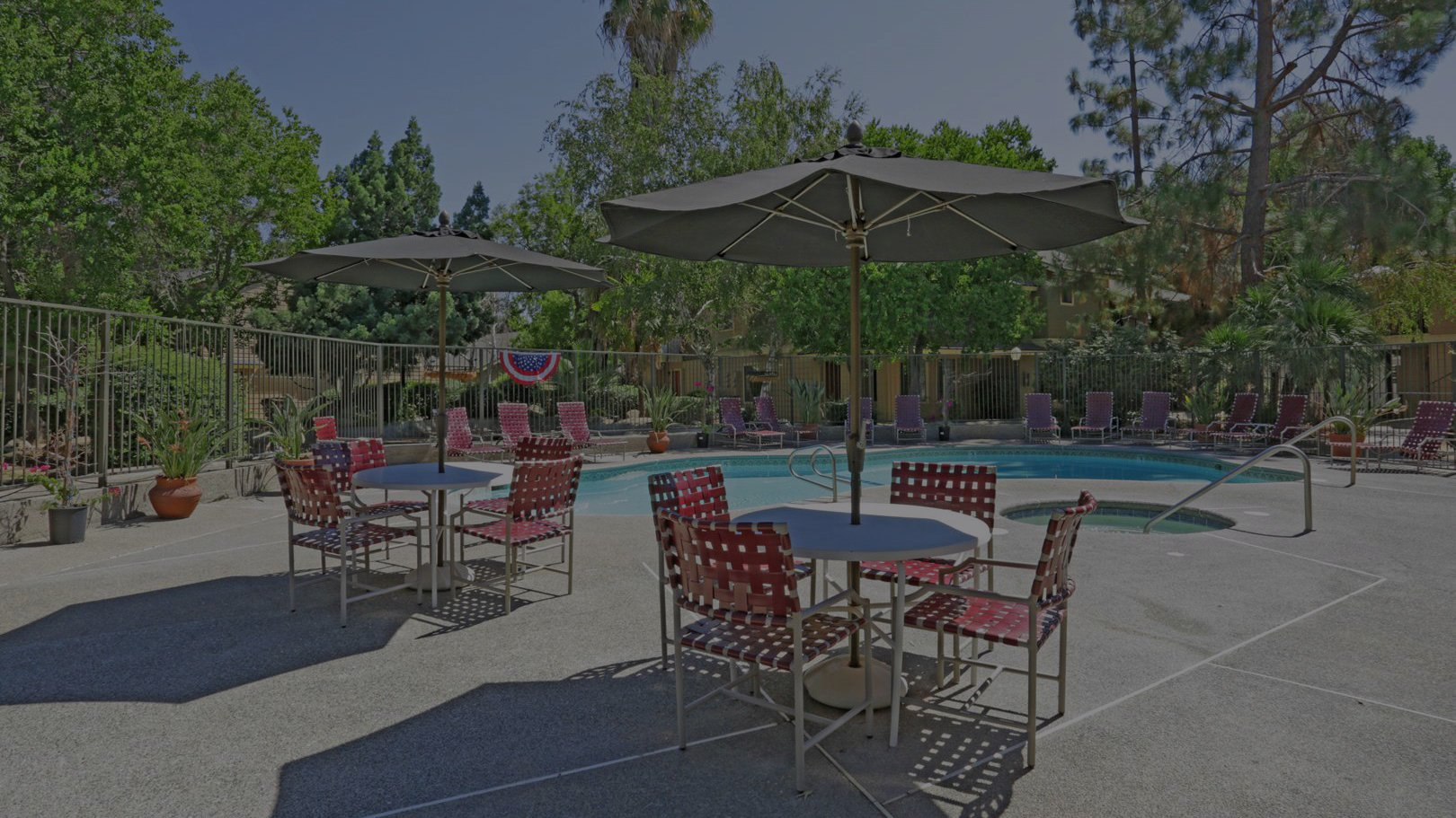 Pet Friendly Apartments in Fresno, CA | The Springs Apartments