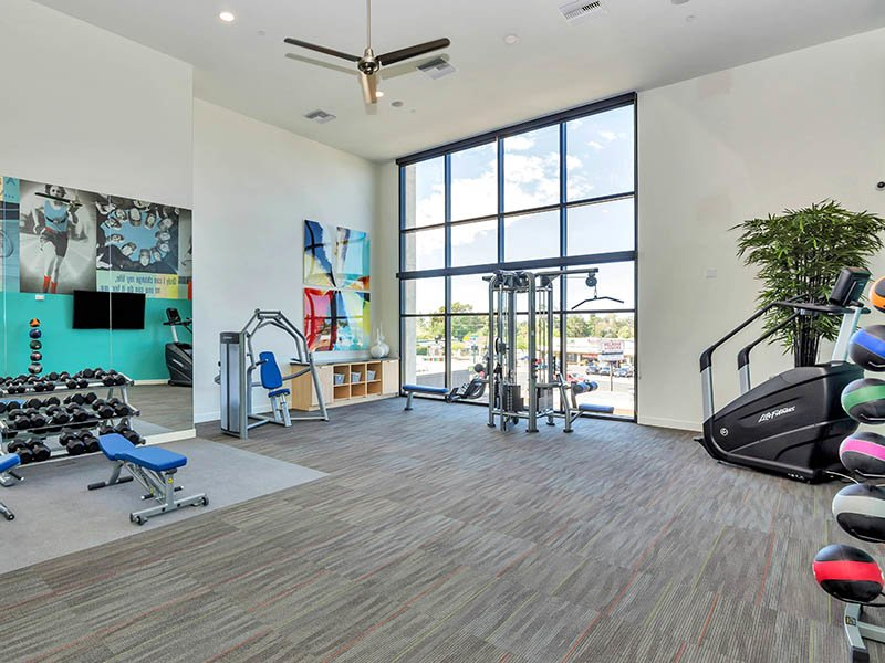 Gym | The Curve at Melrose Apartments in Phoenix, AZ