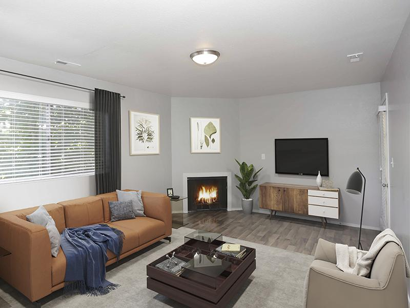 Living Room | Sunnyvale Apartment