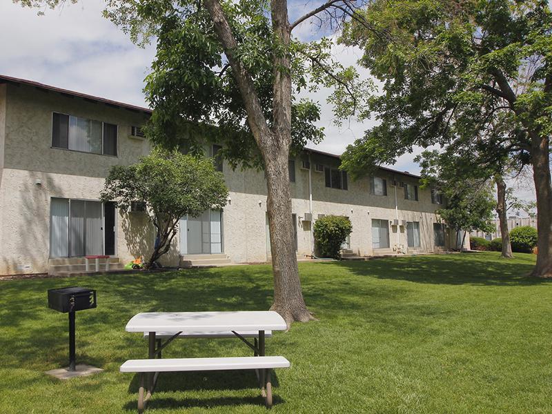 BBQ & Picnic Area   Riviera Apartments in Northglenn, CO