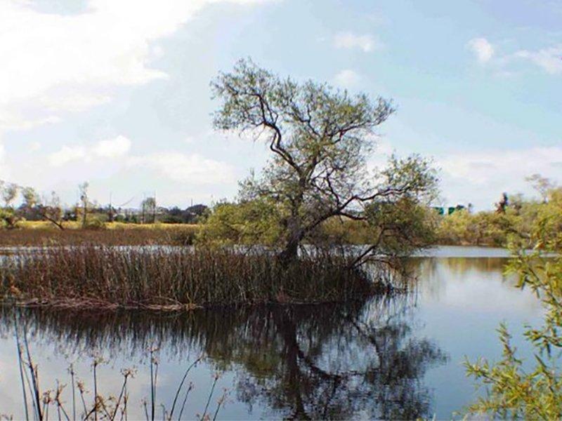 Otay Valley Regional Park