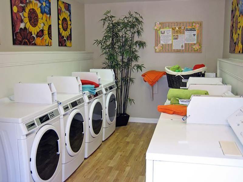 Laundry Center | Chardonnay Ridge