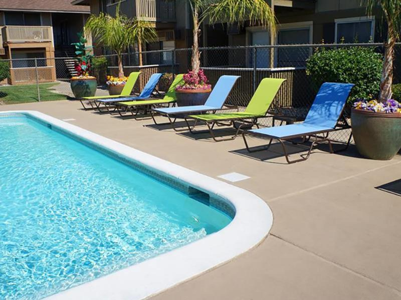 Pool Side | Chardonnay Ridge