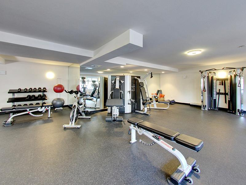 Gym | Panomar Apartments in Alameda, CA