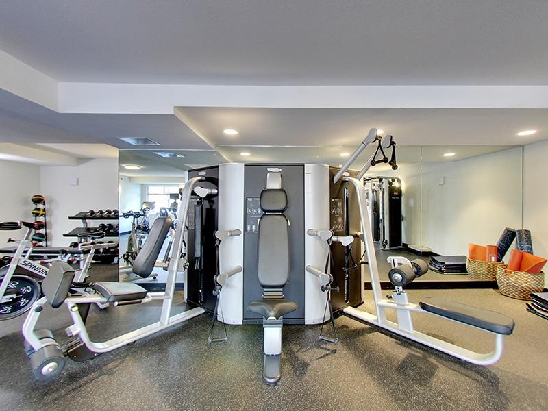 Workout Machines | Panomar Apartments in Alameda, CA
