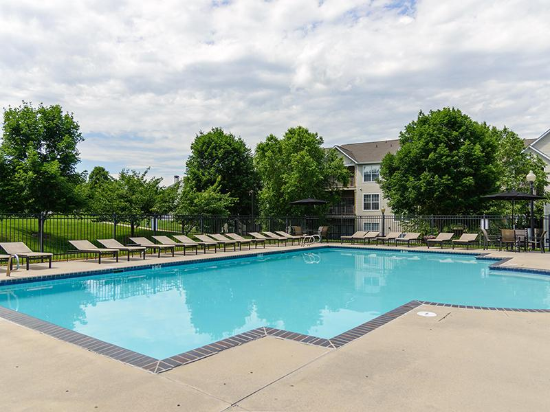 Pool | Apartments with a Pool | Fredericksburg, VA