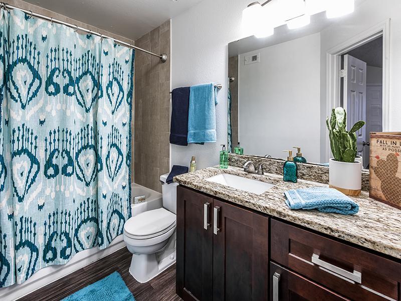 Deluxe Bathroom | Lake Tivoli Apartments