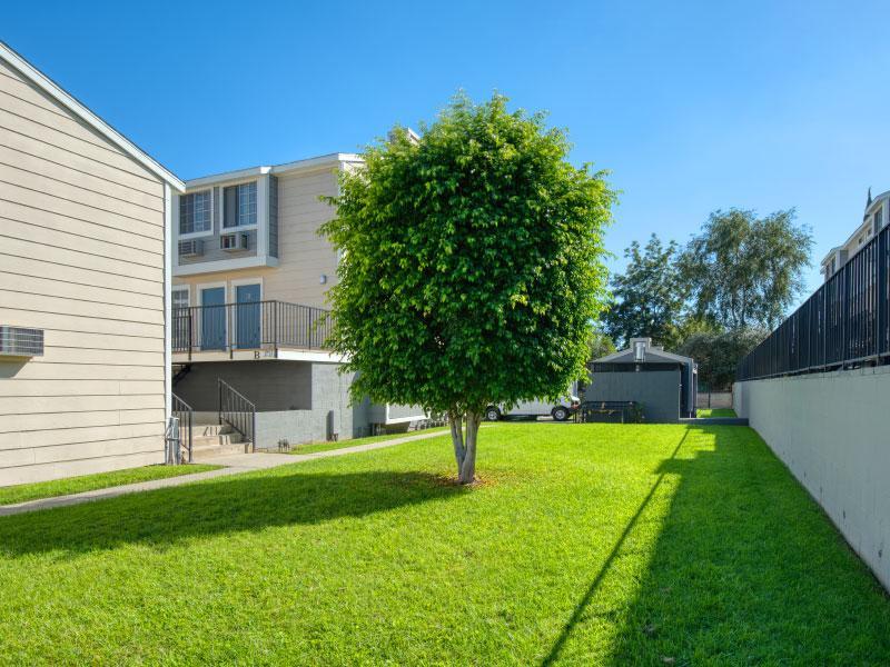 Apartment back yard grass   Lake Balboa Apartments
