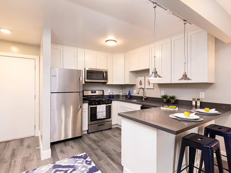 Stainless Steel Appliances | Solis Garden Apartmen