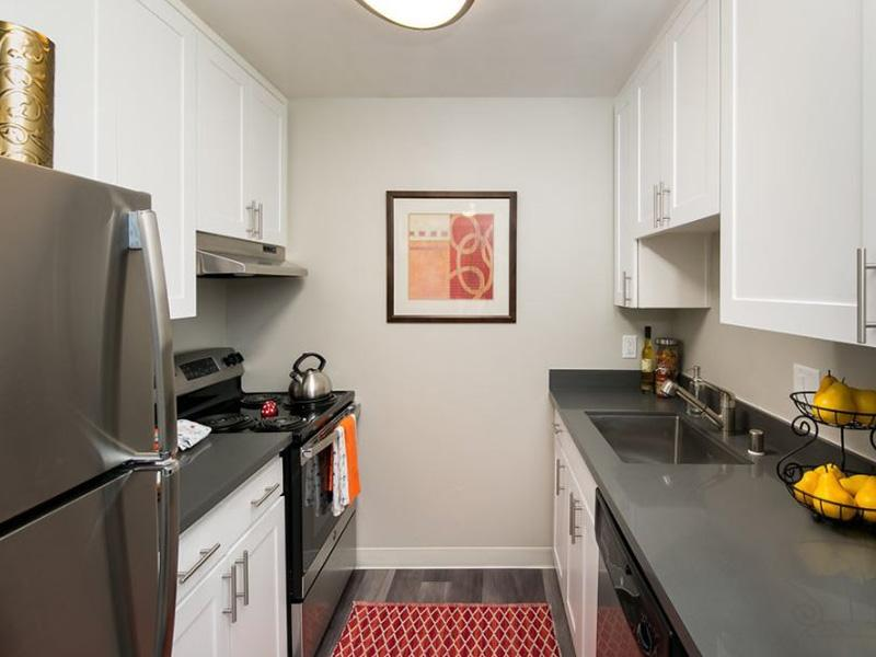 Fully Equipped Kitchen | Vivante Apartments