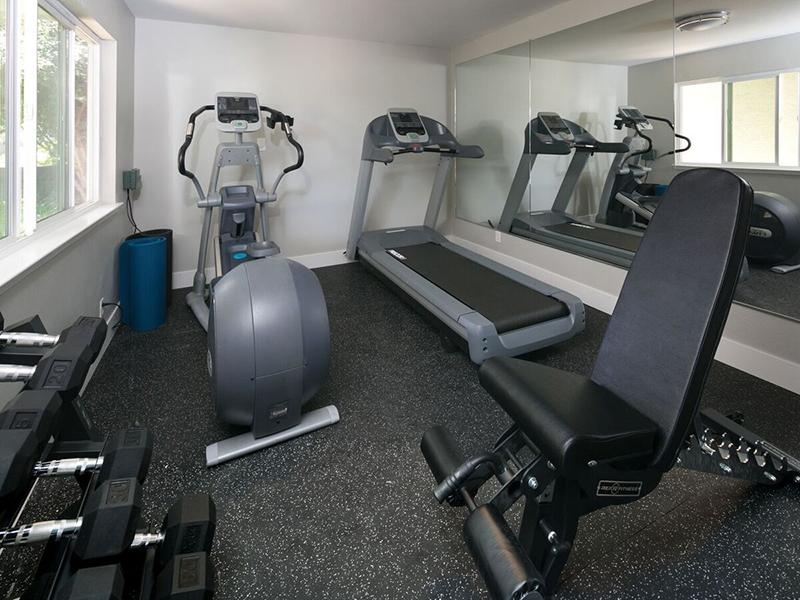 Gym | Vivante Apartments