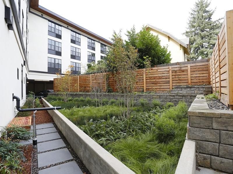 Fence and Foliage   Northwood