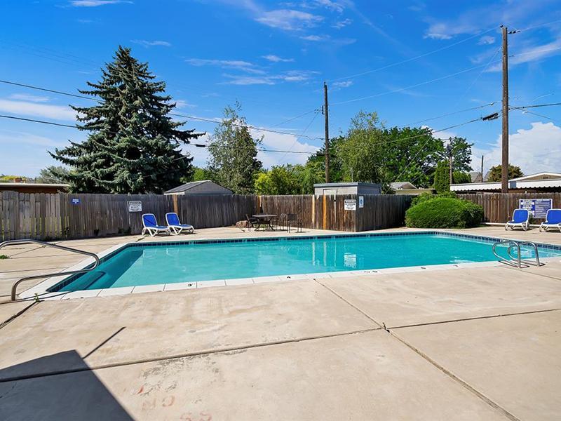 Swimming Pool   Medallion Apartments