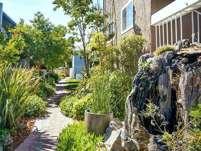 Garden Pathway - Sun Valley Apts - CA