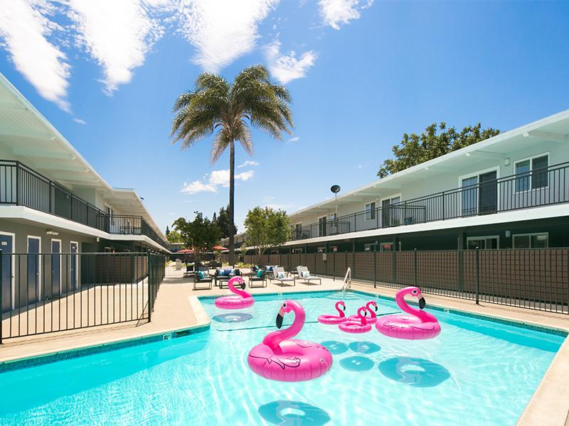 Central Pool | Aloha Apartments