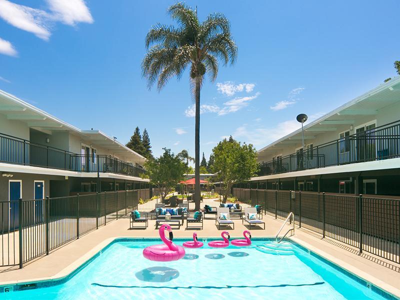 Pool | Aloha Apartments