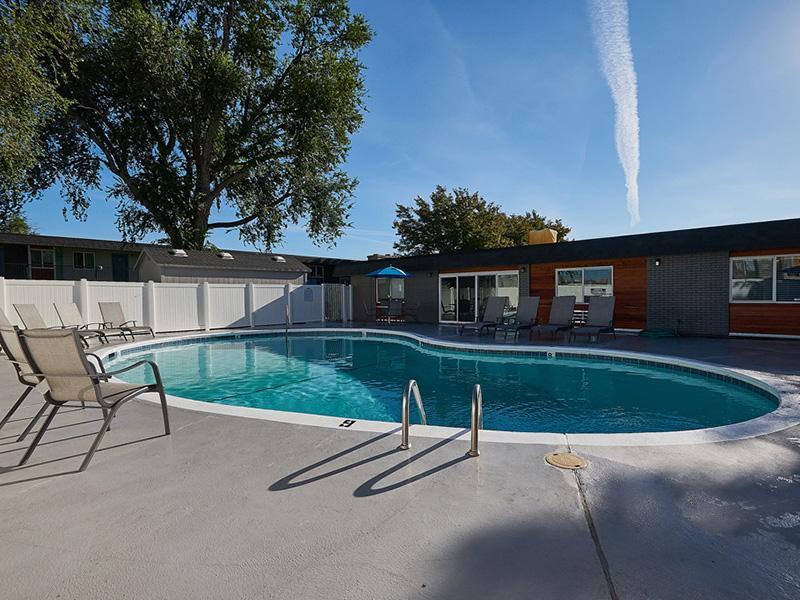 Swimming Pool | Landing Point