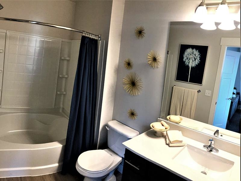 Master Bathroom | Meadows at American Fork