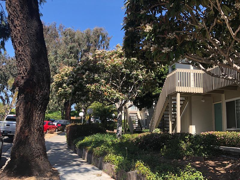 Citywalk Apartments in Santa Barbra, CA