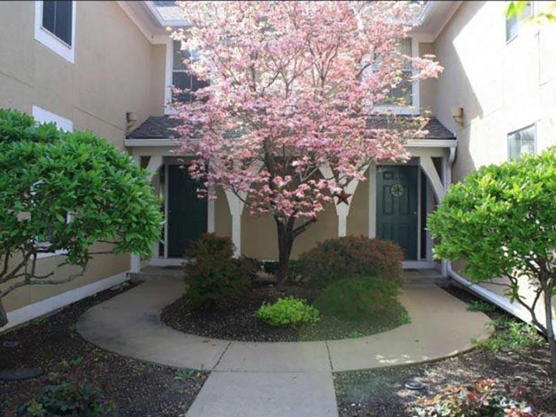 Cherry Blossom Entry - Double Entry Townhome