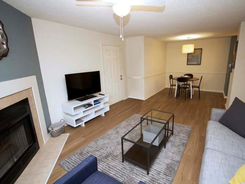 Living Room - Family Room - Living Area
