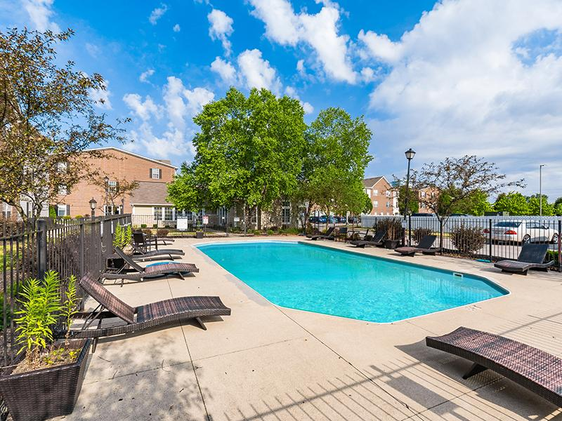 Swimming Pool | Enclave at Albany Park