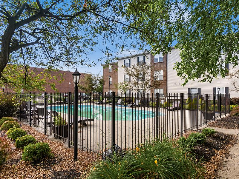 Pool | Enclave at Albany Park