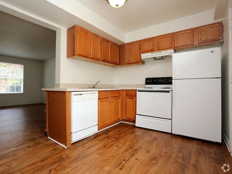 Kitchen - Sink - Refrigerator - Dishwasher