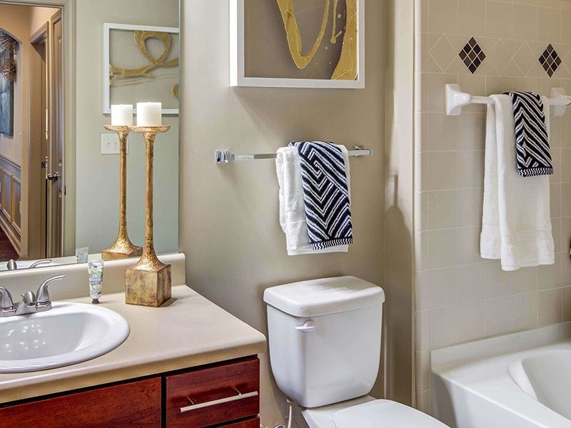The bathroom features a tub shower, toilet and vanity sink at Eagle's Brooke Apartments in Locust Grove.