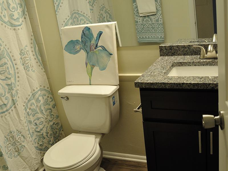 Bathroom | Chase Heritage Apartments