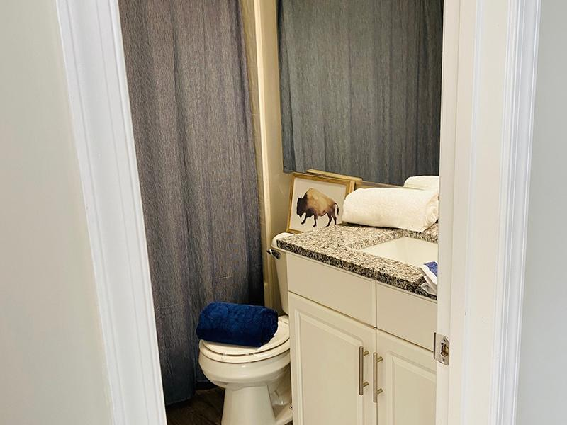 A toilet and vanity sink in the bathroom at The Lakes at Town Center Apartments in Hampton.