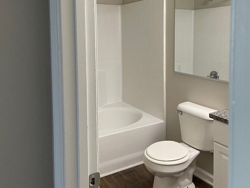 A toilet and tub shower in an apartment in Hampton, VA.