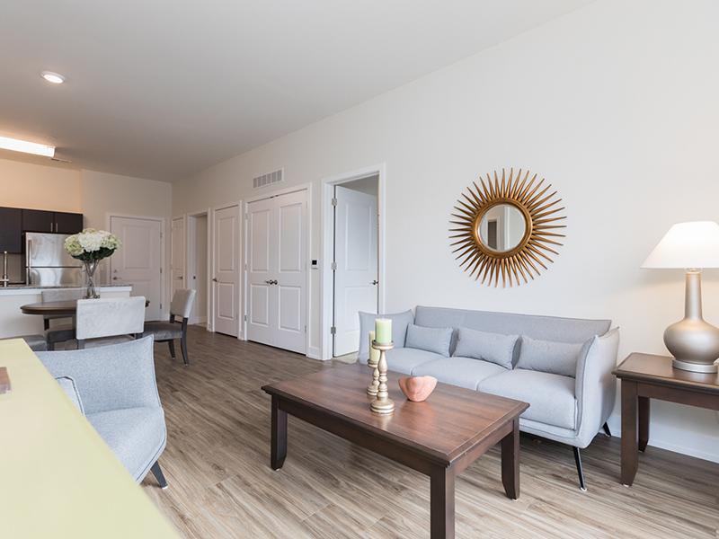 Model Living Room   222 Park Place Apartments