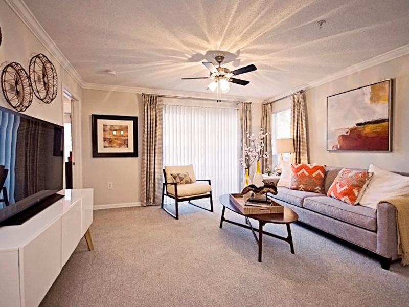 Living Room | Shadow Ridge Apartments