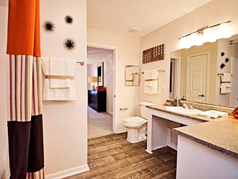 Bathroom | Shadow Ridge Apartments