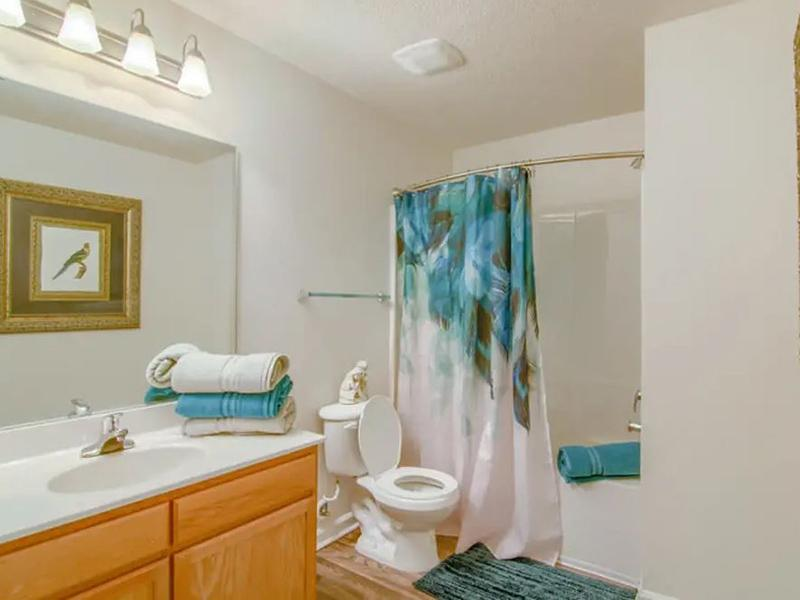 Bathroom | Retreat at Stonecrest
