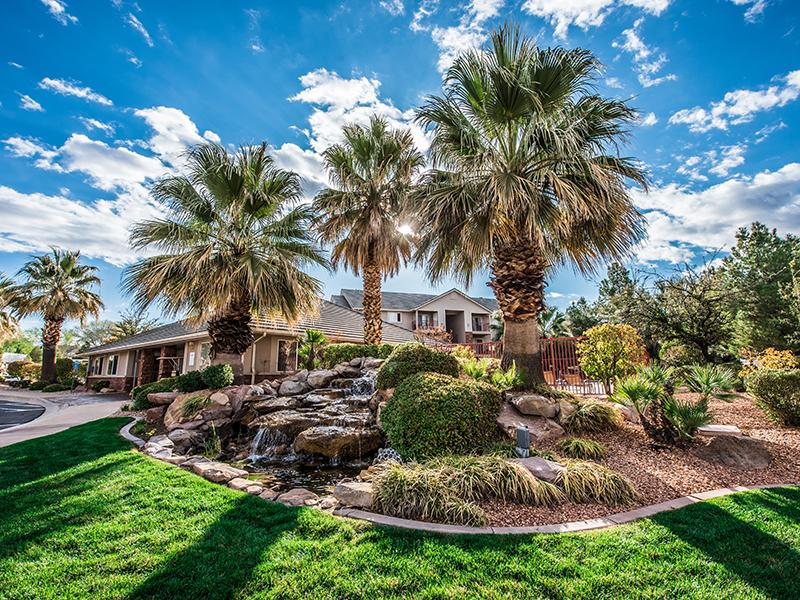 Beautifully Landscaped | Oasis Palms