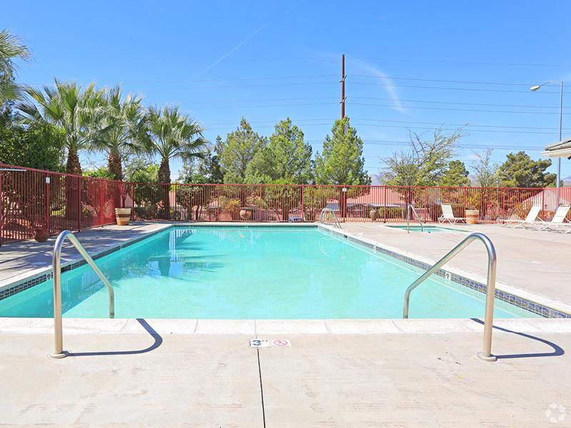 Pool | Oasis Palms Luxury Apartment Community