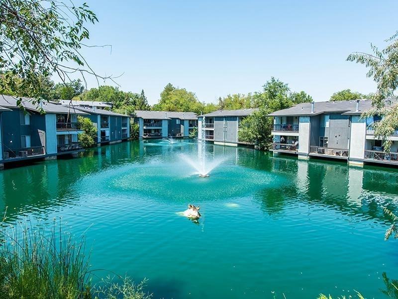 Pond at Miller Estates