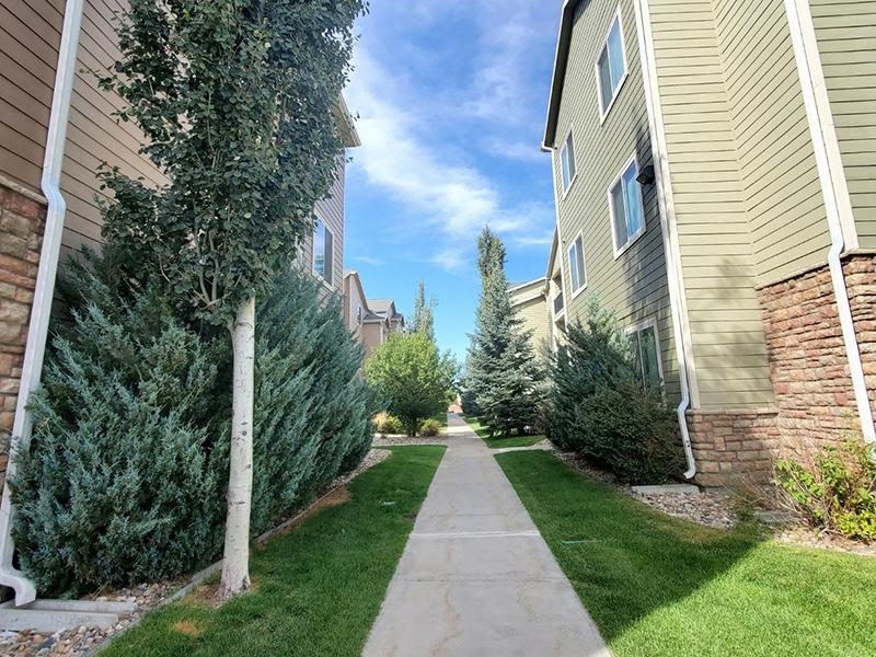 Walking Trails | South Fork Apartments