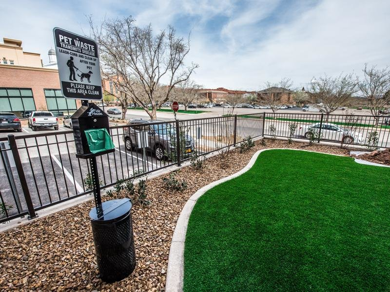 Dog Park | Joule Plaza