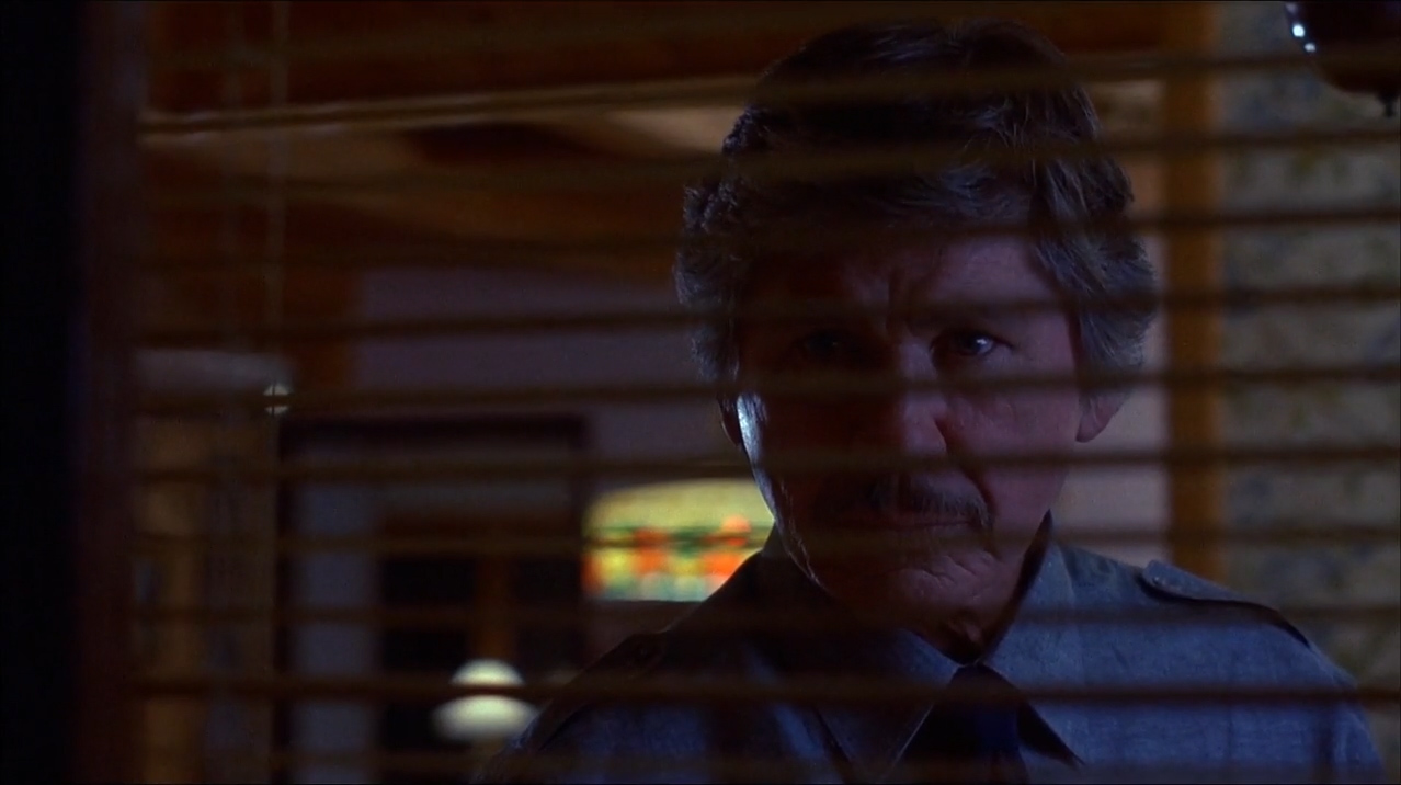 Death Wish 4: The Crackdown (1987)